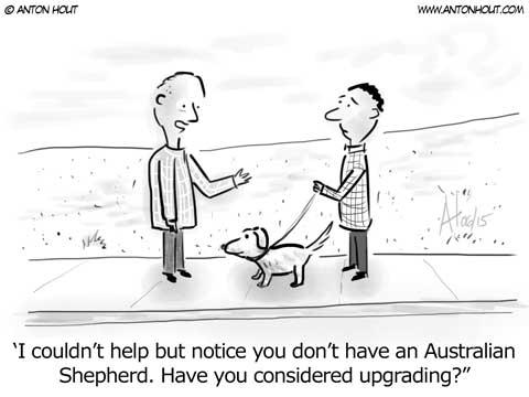 Australian Shepherd Cartoon