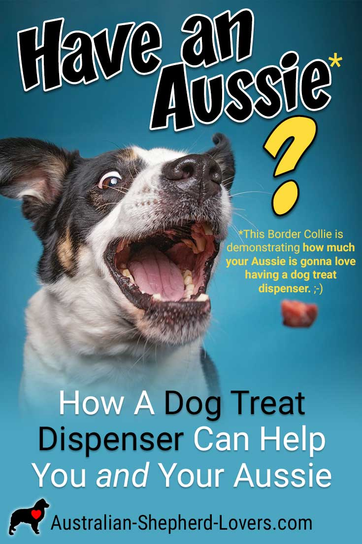 A dog treat dispenser can be a great way to interact with your dog when you're away from home and can keep your neighbors happy by allowing you to curb nuisance barking while you're out of the house. #australianshepherd #dogtreats #dogtreatdispenser #dogtraining #aussielovers