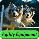 Affordable Agility Equipment