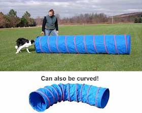 Handler directing dog into dog agility tunnel.