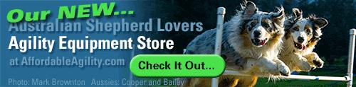 Australian Shepherd Lovers Affordable Agility Equipment Store