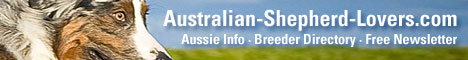 Australian-Shepherd-Lovers.com - Everything for Aussie and Mini Aussie Lovers. Information and resources featuring sections                                     on Australian Shepherd and Miniature Australian Shepherd history, health, genetics, temperament, training and agility with                                     directories of rescue organizatons and breeders.