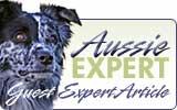 Aussie Expert - Guest Australian Shepherd Expert Article