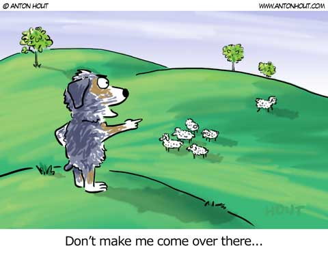 Australian Shepherd Lovers - Cartoon of the Week - from AntonHout.com