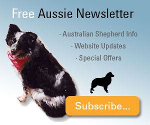 Subscribe to the Free Australian Shehperd Lovers Newsletter