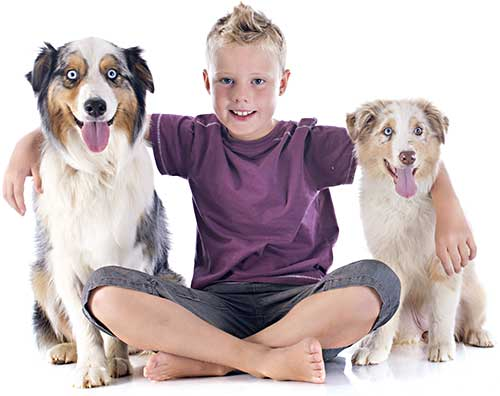 Child Dog Bite Prevention