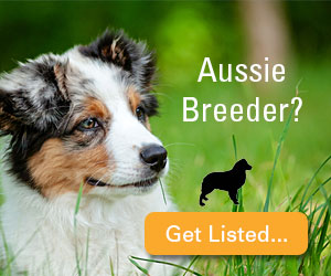 Aussie Breeder? Get Listed...