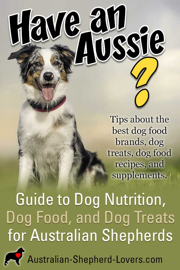 Guide to Dog Nutrition, Dog Food, and Dog Treats. Information and tips about the best dog food brands, supplements, diet products, dog food recipes, and dog treats for your Australian Shepherd.  #australianshepherd #dognutrition #dogfood #dogtreats #puppyfood #aussielovers
