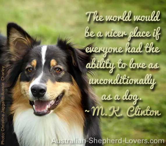 The world would be a nicer place if everyone had the ability to love as unconditionally as a dog. ~ M.K. Clinton