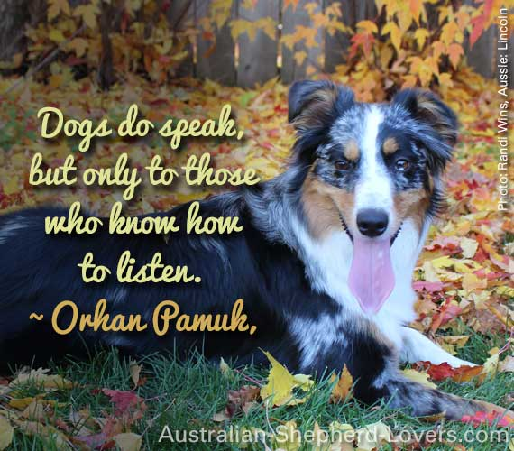 Dogs do speak, but only to those who know how to listen. ~ Orhan Pamuk