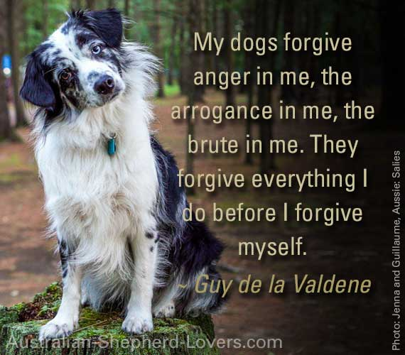 My dogs forgive anger in me, the arrogance in me, the brute in me. They forgive everything I do before I forgive myself. ~ Guy de la Valdene