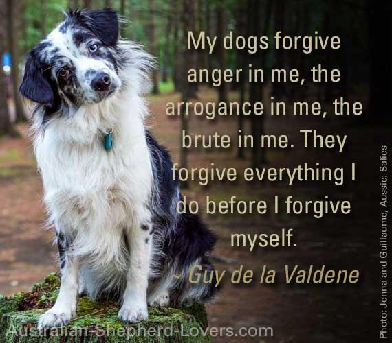 My dogs forgive anger in me, the arrogance in me, the brute in me. They forgive everything I do before I forgive myself. ~ Guy de la Valdene