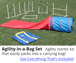 Agility-in-a-Bag Set