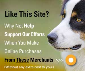 How You Can Support This Site