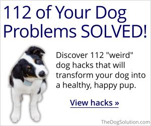 112 of Your Dog Problems SOLVED!