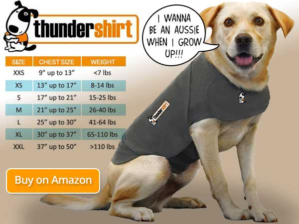 Thundershirt Size Chart for Dogs