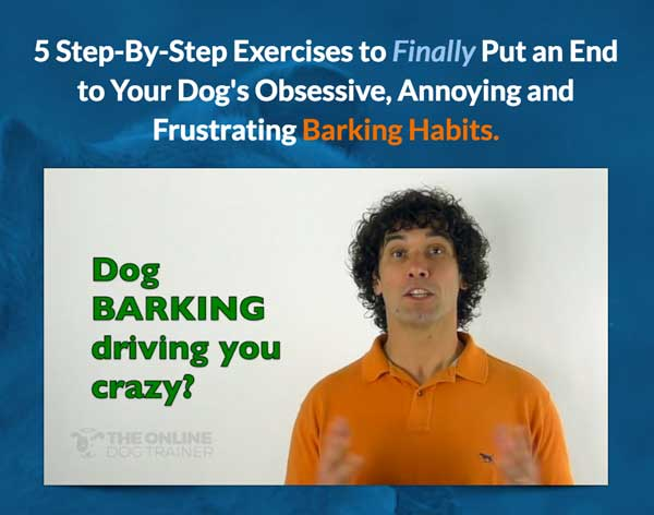 5 Step-By-Step Exercises to Finally Put an End to Your Dog's Obsessive, Annoying and Frustrating Barking Habits.