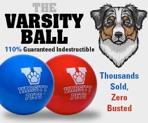 The Varsity Ball - 100% Guaranteed Indestructible