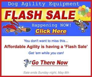 Affordable Agility Equipment Flash Sale