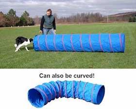 Handler directing dog into dog agility tunnel.