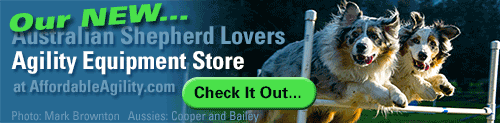 Australian Shepherd Lovers Affordable Agility Equipment Store