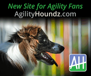 New Site for Agility Fans - AgilityHoundz.com
