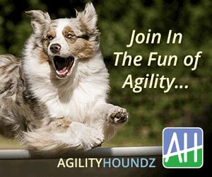 New Site for Agility Fans - AgilityHoundz.com