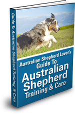 Australian Shepherd eBook