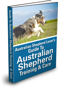 Guide To Australian Shepherd Training & Care Ebook