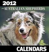 2012 Australian Shepherd Calendar