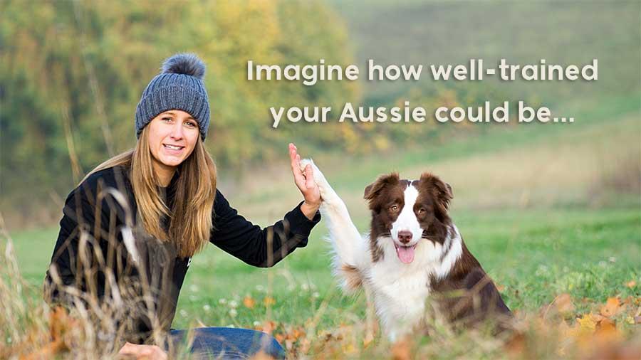 Lady giving high-five to her Australian Shepherd.