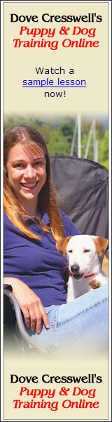 Dove Cresswell's Puppy and Dog Training Online