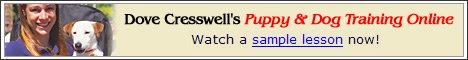 Dove Cresswell's Puppy & Dog Training Online - Sample Lesson