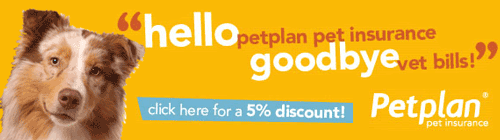 Get a Quote for PetPlan Pet Insurance