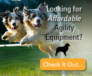 Looking for Affordable Agility Equipment?