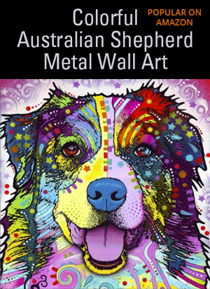 Colorful Australian Shepherd Metal Wall Art