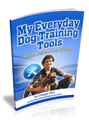 """My Everyday Dog Training Tools By Professional Dog Trainer, """"Doggy Dan"""""""