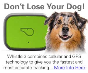 Whistle 3 GPS Dog Tracker