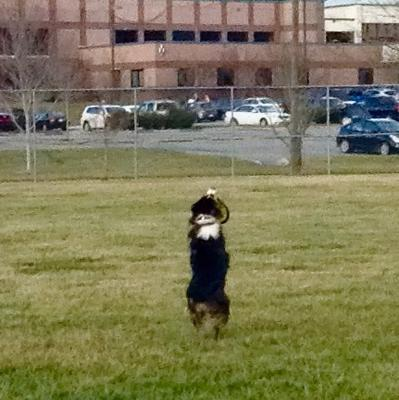 First frisbee catch