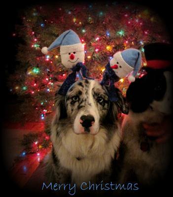 A Very Merry Bleu Christmas