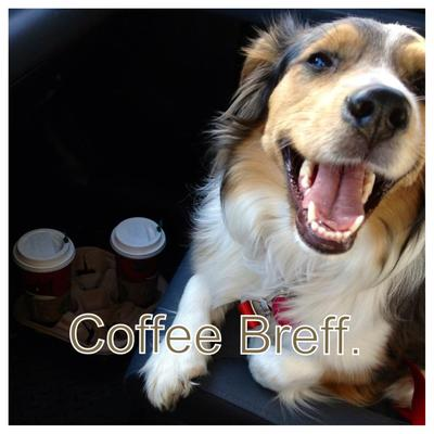 KELLY - Loves riding to starbucks: does not actually drink coffee.