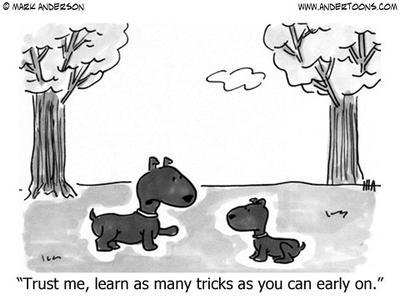 What tricks can your Australian Shepherd do?