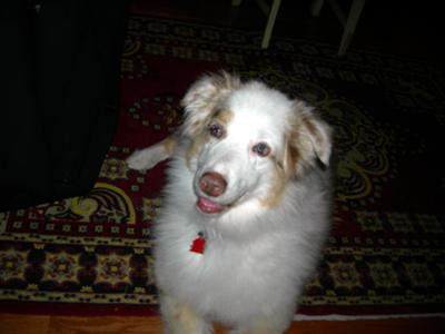 Molly '09