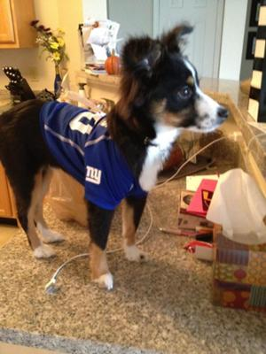 He was very happy about the Giants Superbowl win!