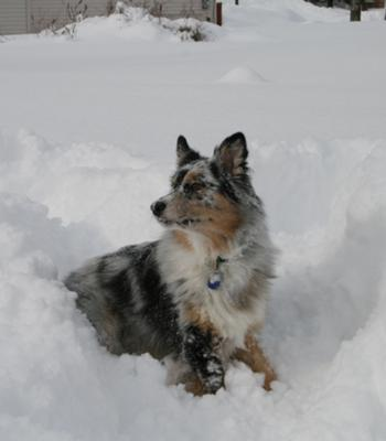 His first big snow day!!