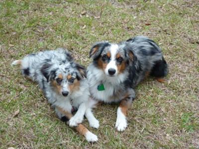 Saddie & Mika
