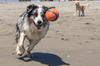 Always kept his eye on the ball