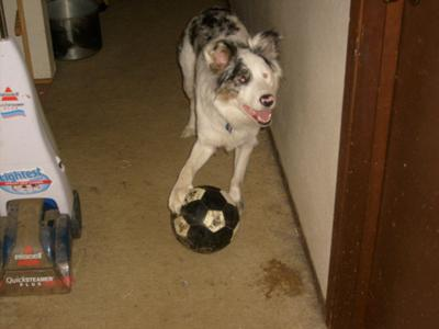 Gracie playing soccer