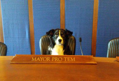 Maggie Mayor Pro Tem for the city of Des Moines